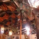 Safari themed bar